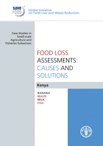 food_loss_assessments_causes_and_solutions