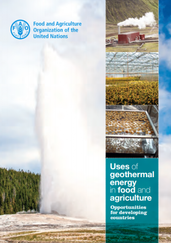 use_of_geothermal_energy_in_food_and_agriculture