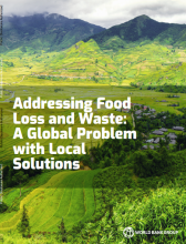 Addressing Food Loss and Waste