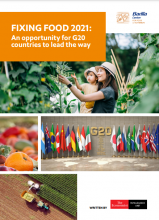 Fixing Food 2021: An opportunity for G20 countries to lead the way. Barilla Foundation. Written by The Economist Intelligence Unit.