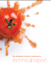 The Avoidable Crisis of Food Waste