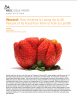 Wasted: How America Is Losing Up to 40 Percent of Its Food from Farm to Fork to Landfill. NRDC